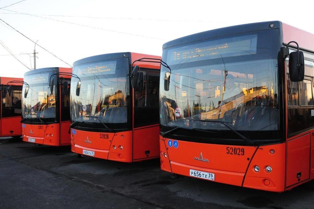 В Калининграде на 4 рубля дорожает проезд в общественном транспорте