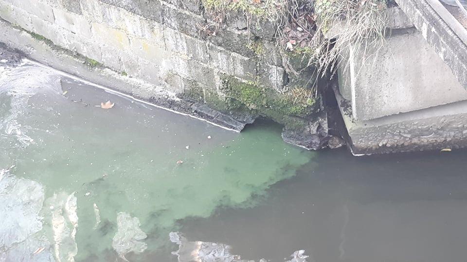 В Калининграде окрасили уранином сточные воды