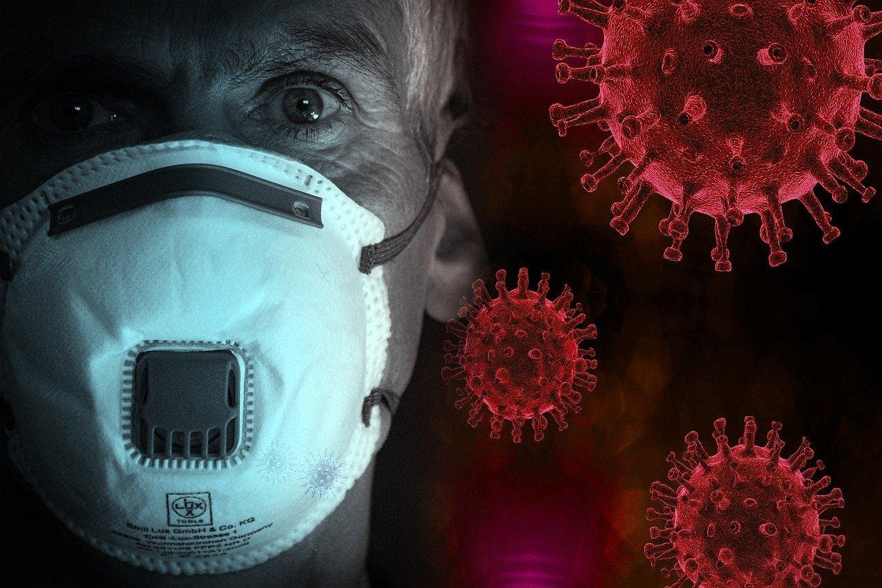 Российские учёные: Коронавирус менее изменчив, чем вирус гриппа. Фото: PixaBay