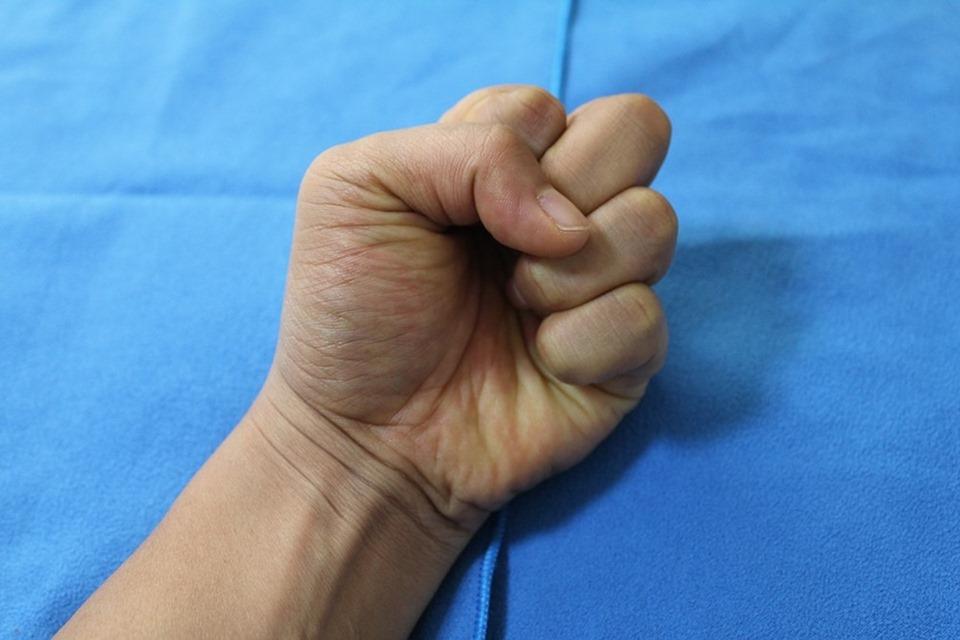 the-fist-486641_960_720
